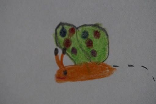 butterfly-670347__340